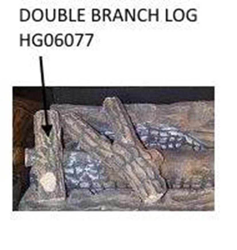 double_branch_log_hg06077